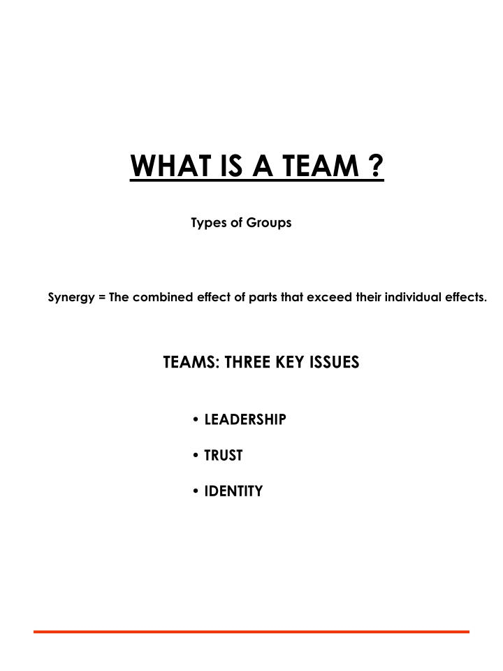 WHAT IS A TEAM ?
