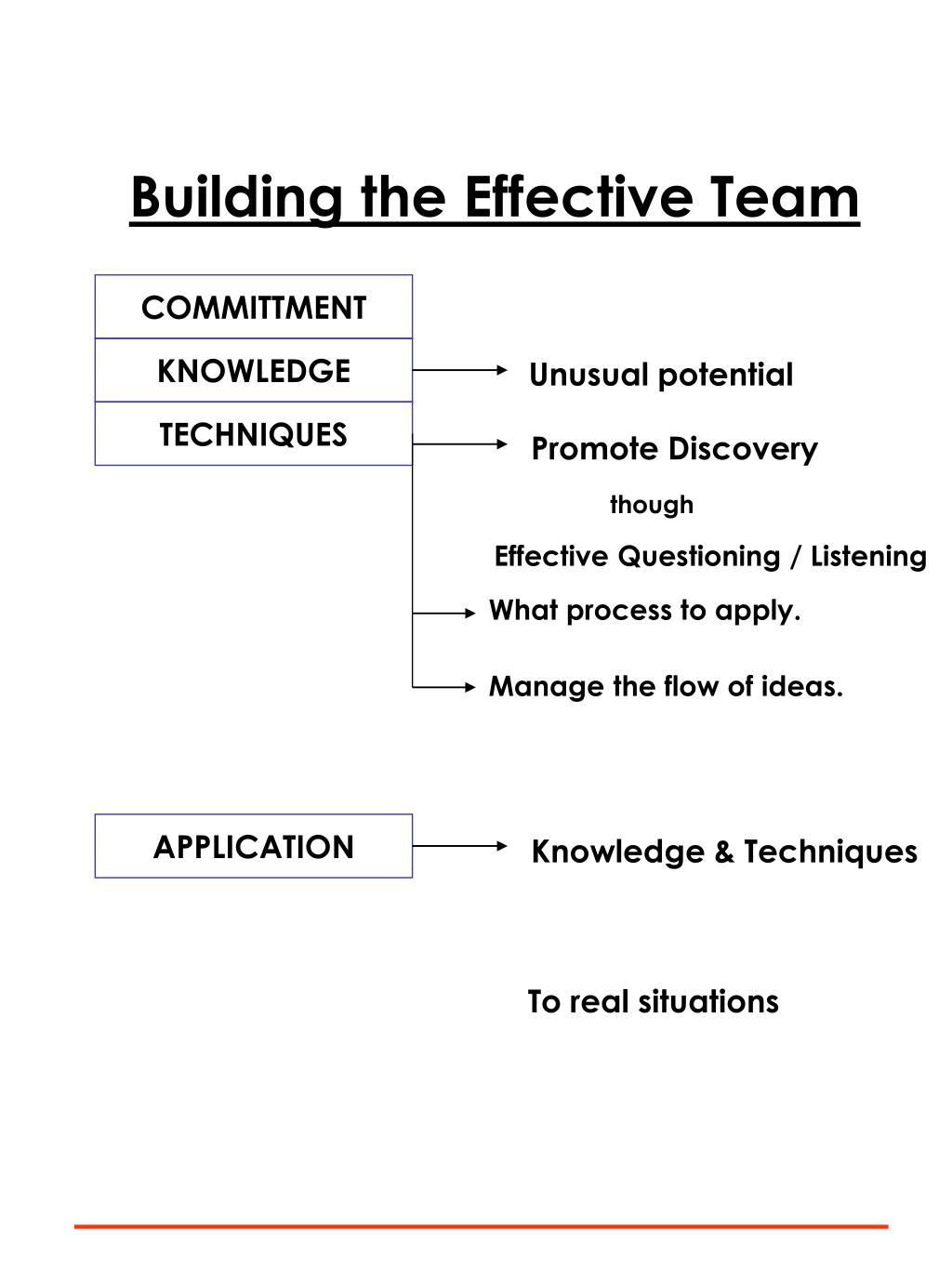 Building the Effective Team