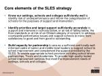 core elements of the sles strategy