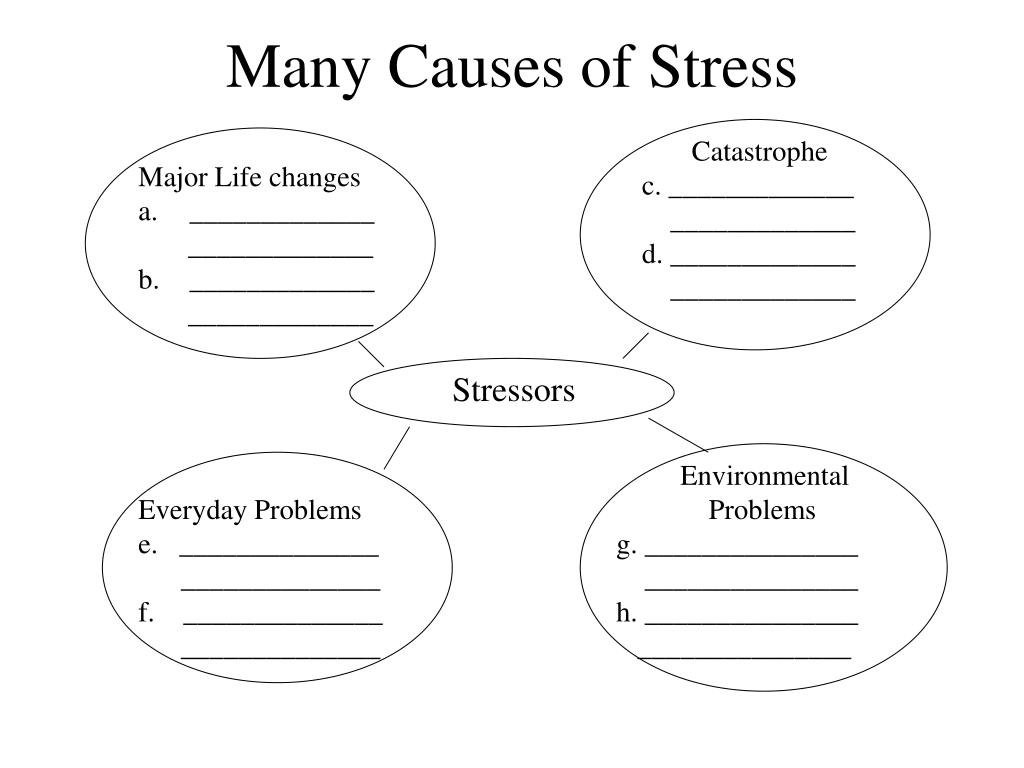 Many Causes of Stress