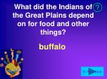 what did the indians of the great plains depend on for food and other things