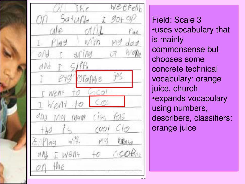 Field: Scale 3