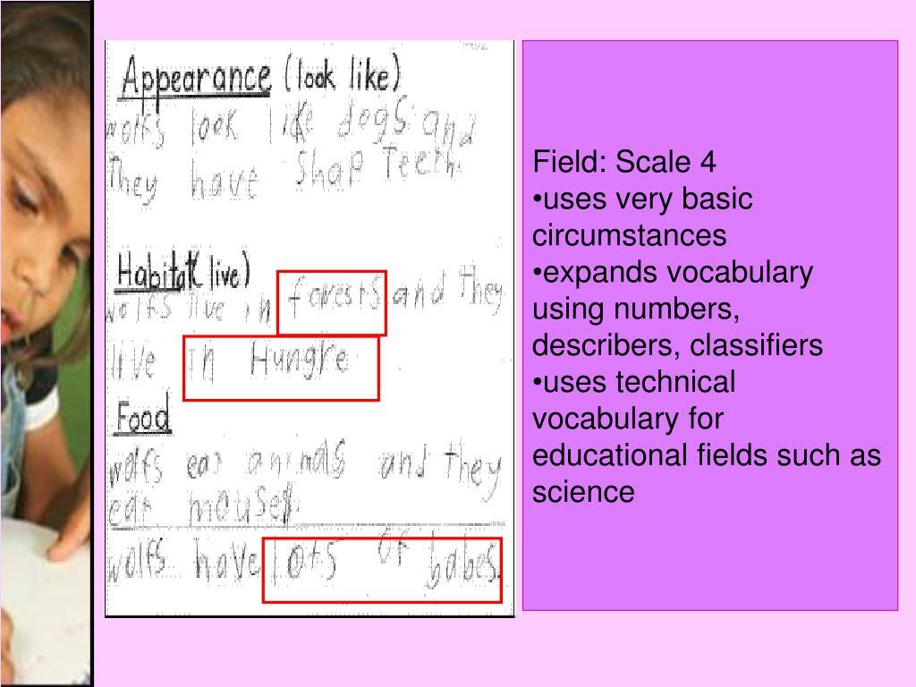 Field: Scale 4