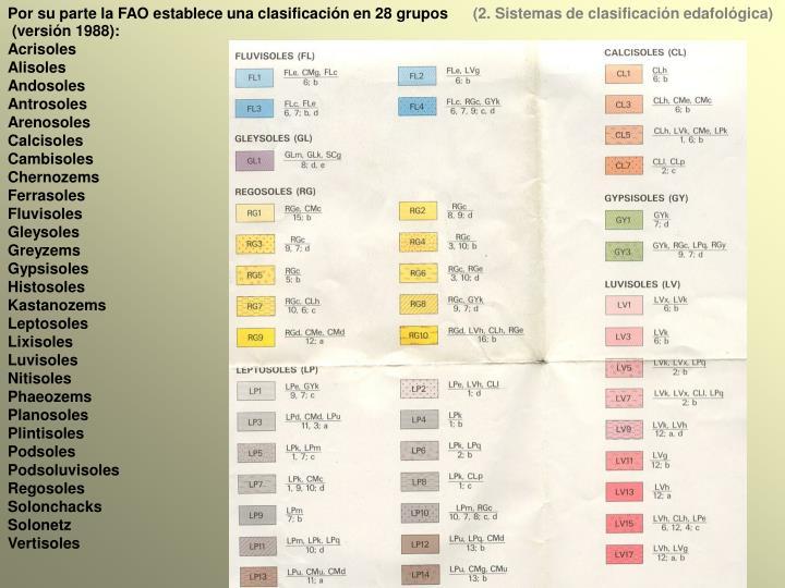 Por su parte la FAO establece una clasificación en 28 grupos