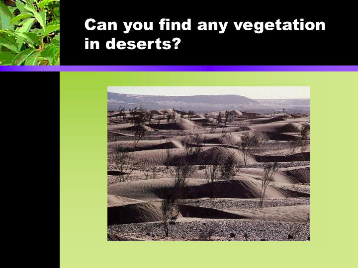 Can you find any vegetation in deserts