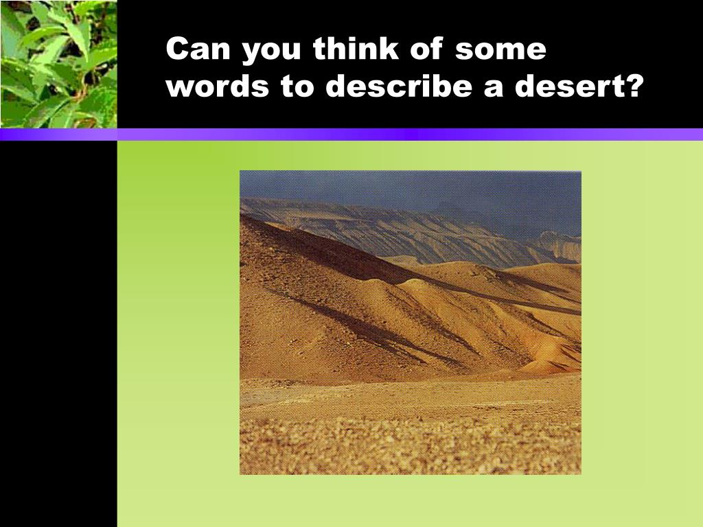 Can you think of some words to describe a desert?