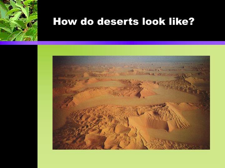 How do deserts look like