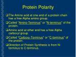 protein polarity