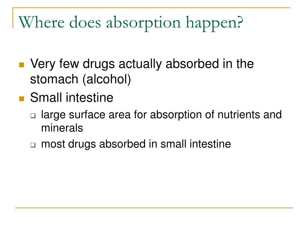 Where does absorption happen?