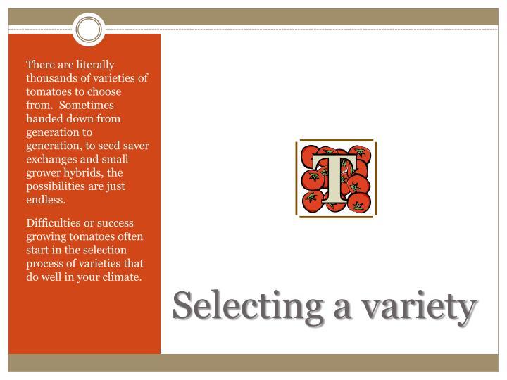 Selecting a variety
