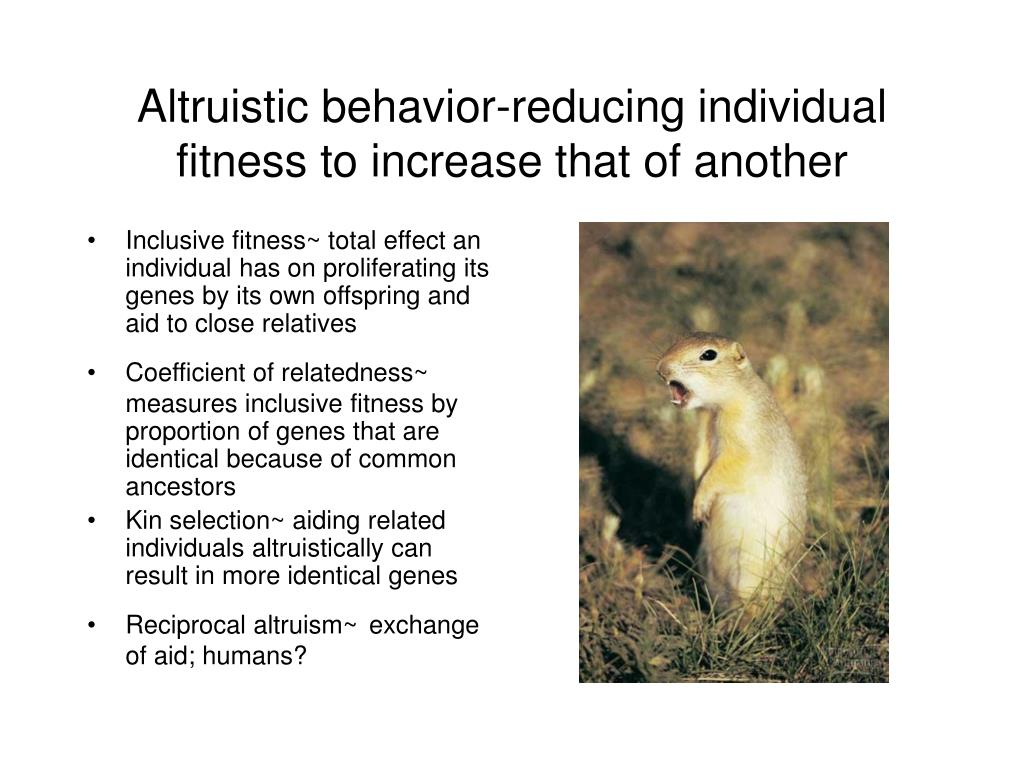 Altruistic behavior-reducing individual fitness to increase that of another