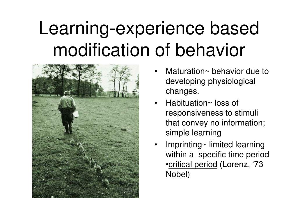 Learning-experience based modification of behavior