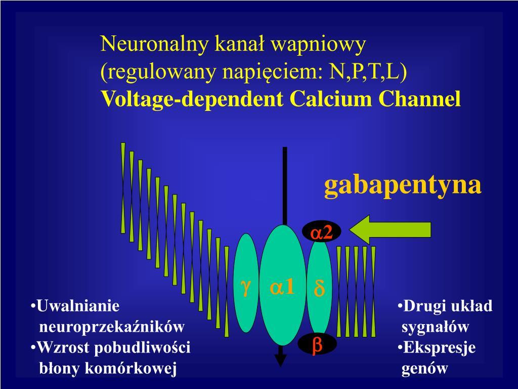 Neuronalny kanał wapniowy