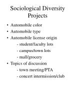 sociological diversity projects