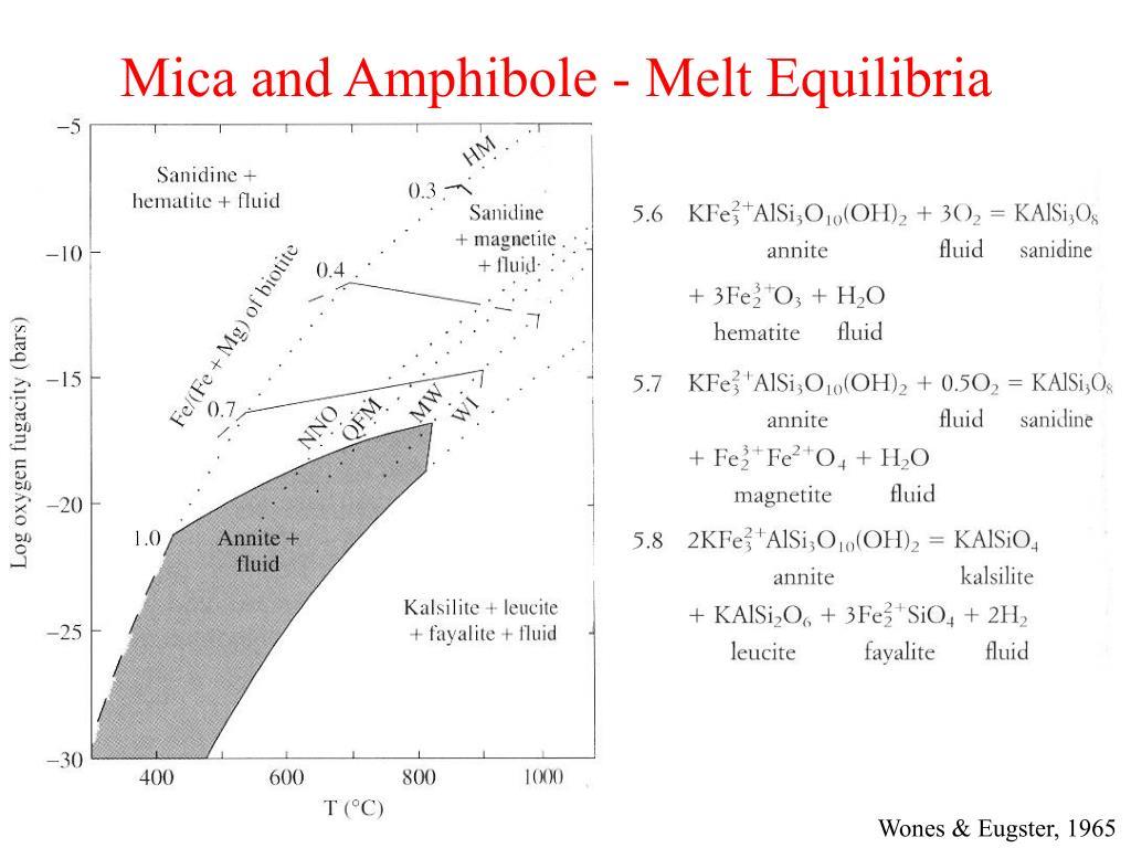 Mica and Amphibole - Melt Equilibria