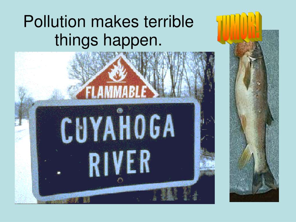 Pollution makes terrible