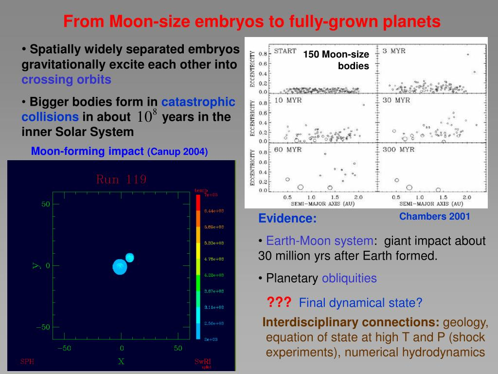 Spatially widely separated embryos gravitationally excite each other into