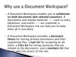 why use a document workspace
