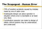 the scapegoat human error