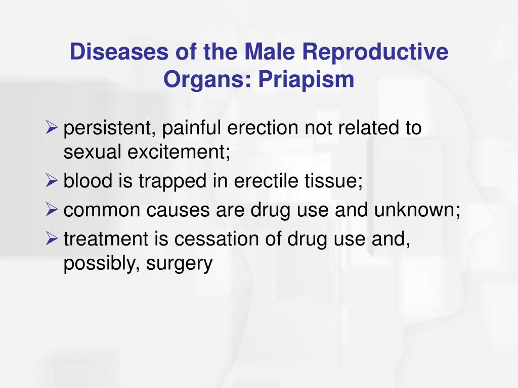 Diseases of the Male Reproductive Organs: Priapism