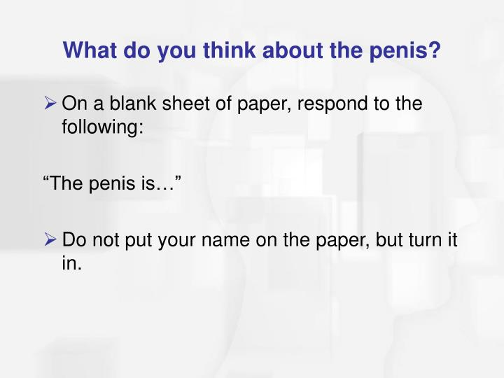 What do you think about the penis