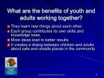 what are the benefits of youth and adults working together