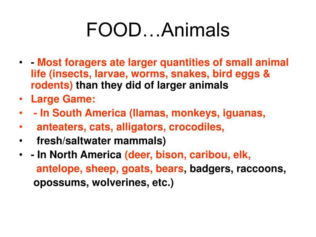 FOOD…Animals