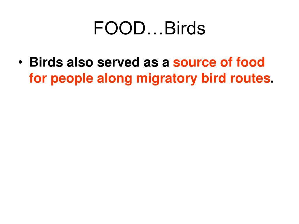 FOOD…Birds