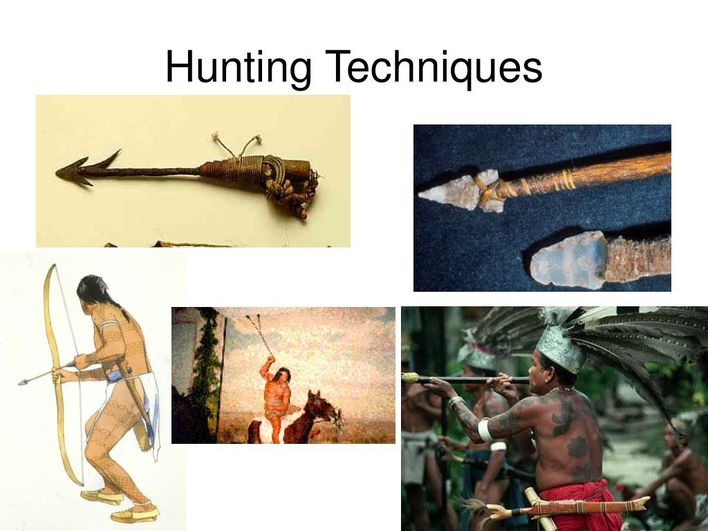 Hunting Techniques