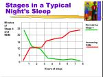 stages in a typical night s sleep8