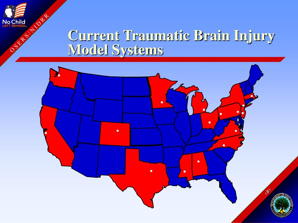 Current Traumatic Brain Injury Model Systems
