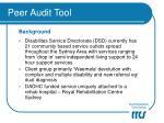 peer audit tool