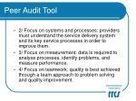 peer audit tool10