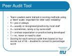 peer audit tool12