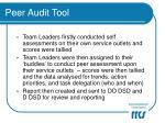 peer audit tool13