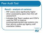 peer audit tool15