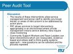 peer audit tool16