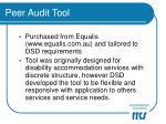 peer audit tool17