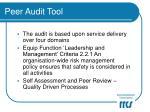 peer audit tool4