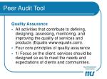 peer audit tool9