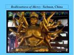 bodhisattava of mercy sichuan china