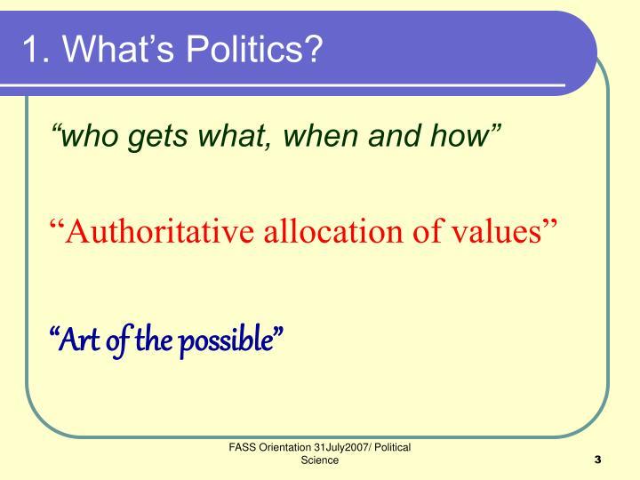 1 what s politics