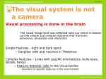 the visual system is not a camera
