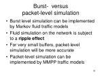 burst versus packet level simulation