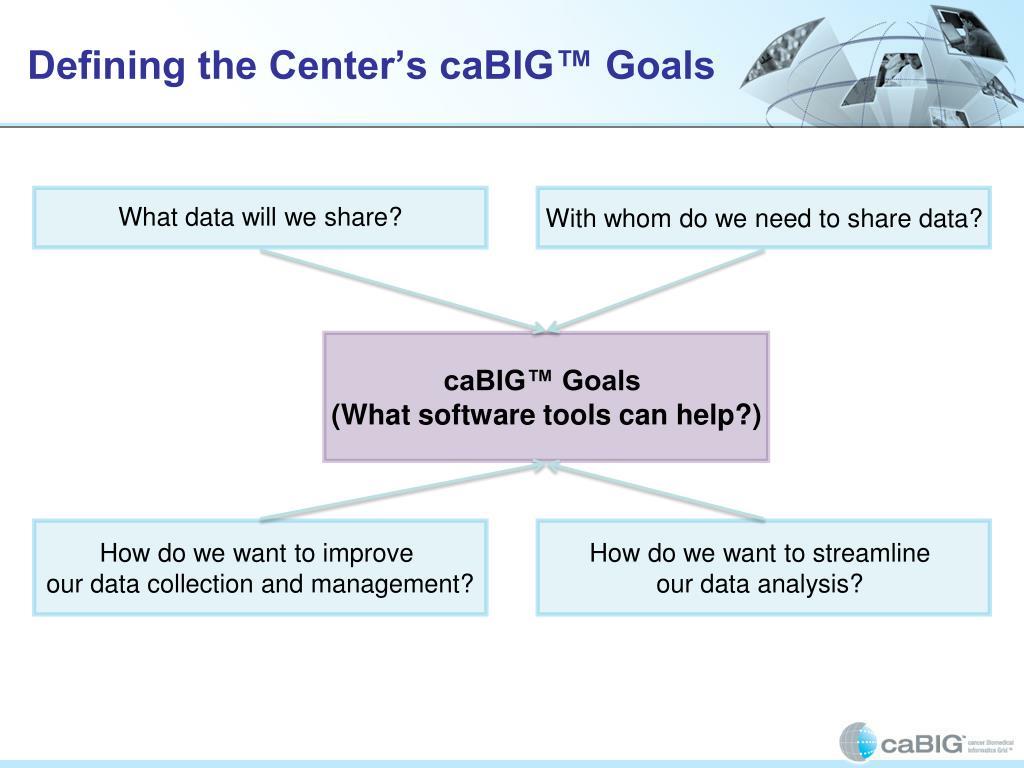 Defining the Center's caBIG™ Goals
