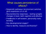 what causes persistence of effects