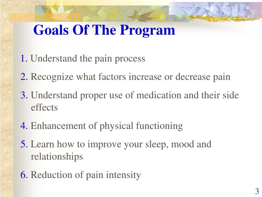 Goals Of The Program
