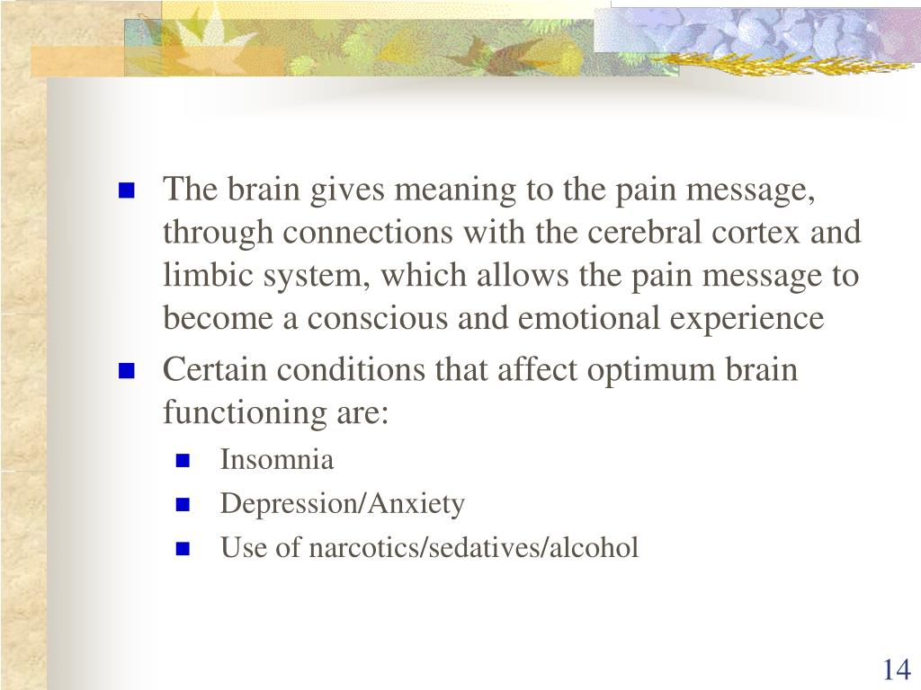 The brain gives meaning to the pain message, through connections with the cerebral cortex and limbic system, which allows the pain message to become a conscious and emotional experience