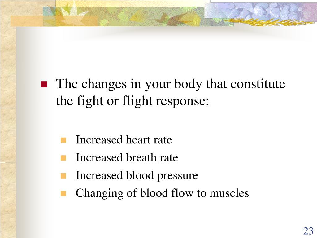 The changes in your body that constitute the fight or flight response:
