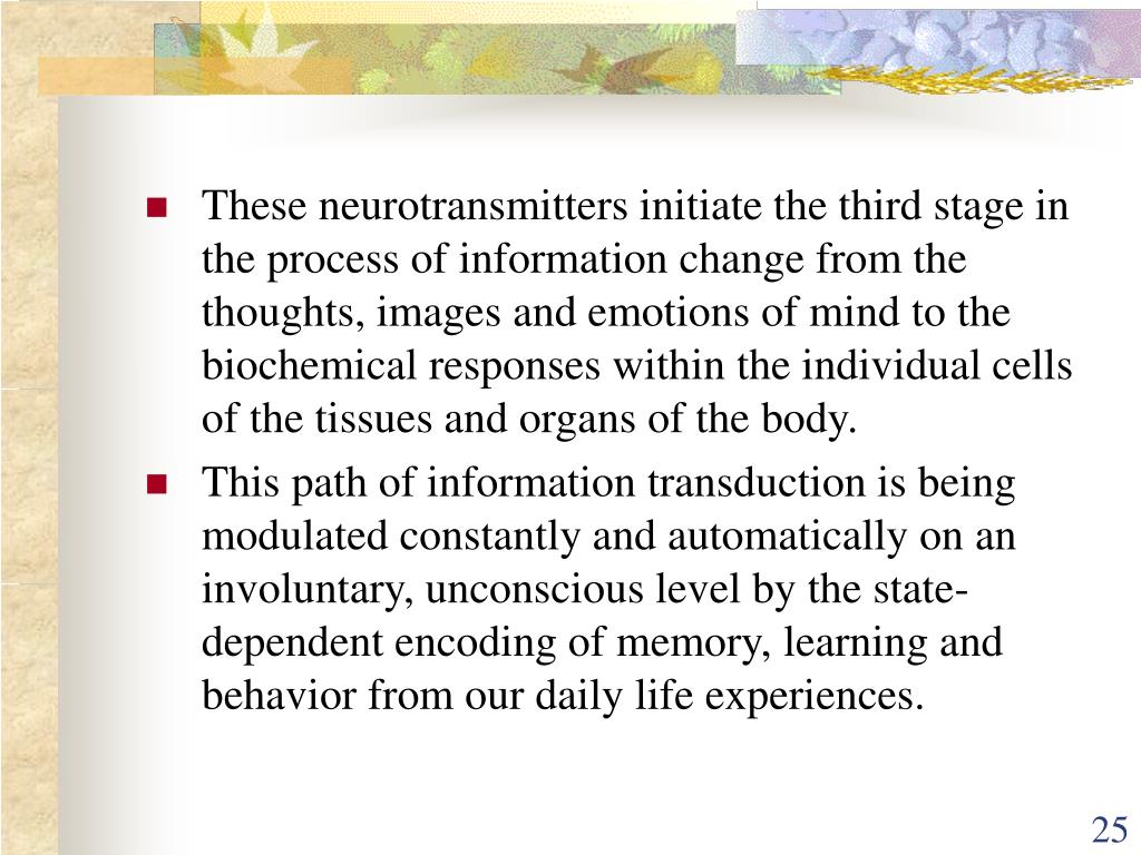 These neurotransmitters initiate the third stage in the process of information change from the thoughts, images and emotions of mind to the biochemical responses within the individual cells of the tissues and organs of the body.